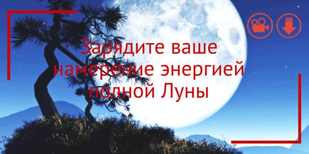 drevo_zhelanij-01