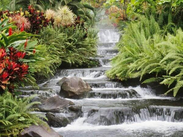 Вода как инструмент повышения вибрации на физическом уровне