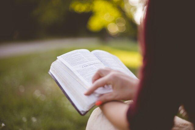 Как не потеряться в изучении новой информации, когда ее слишком много