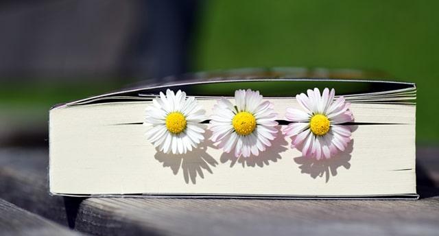 Ежедневно записывайте пять радостных событий