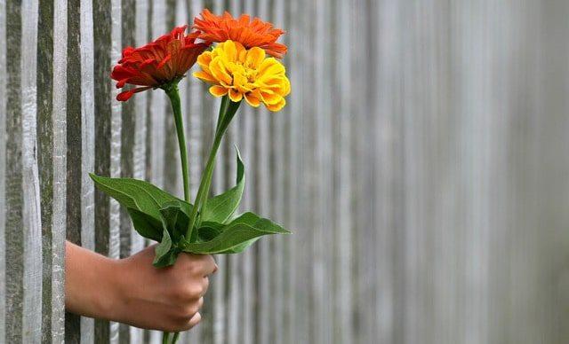 Благодарность – ключ к принятию и внутреннему равновесию. Как научиться испытывать благодарность