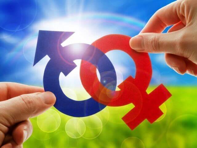 Почему так сложно найти вторую половинку: Соединить мужское и женское