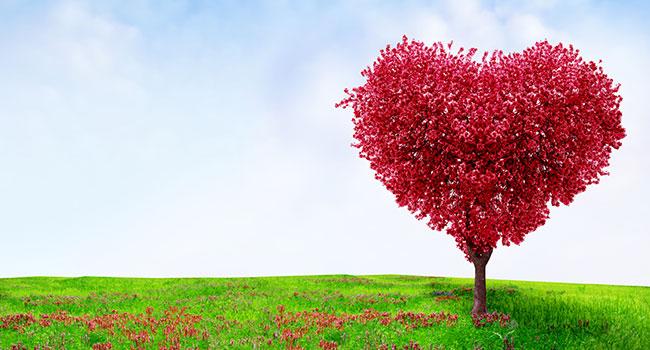 Планетарный новый год: Будьте в сердце и излучайте Любовь