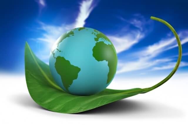 Полнота жизни: Очиститесь от загрязнений, токсинов и паразитов