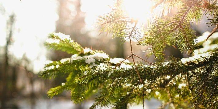 Медитации и практики на Зимнее Солнцестояние