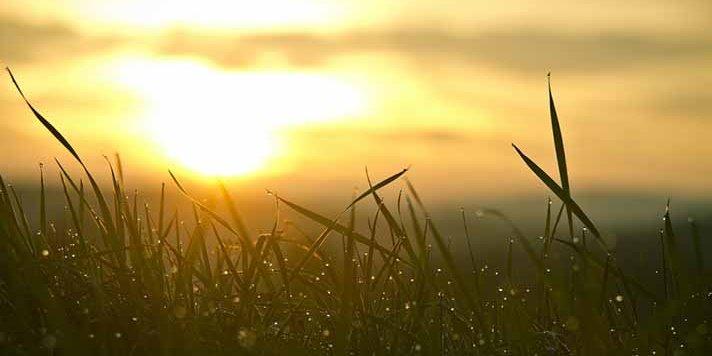 Практики в день летнего солнцестояния