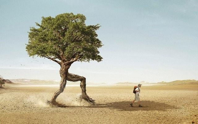 Почему важно проявлять гибкость и как этому научиться