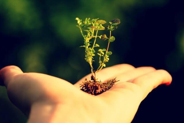 Как преодолеть сомнения на пути духовного роста
