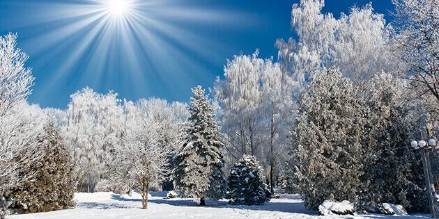Как подготовиться к зимнему Солнцестоянию
